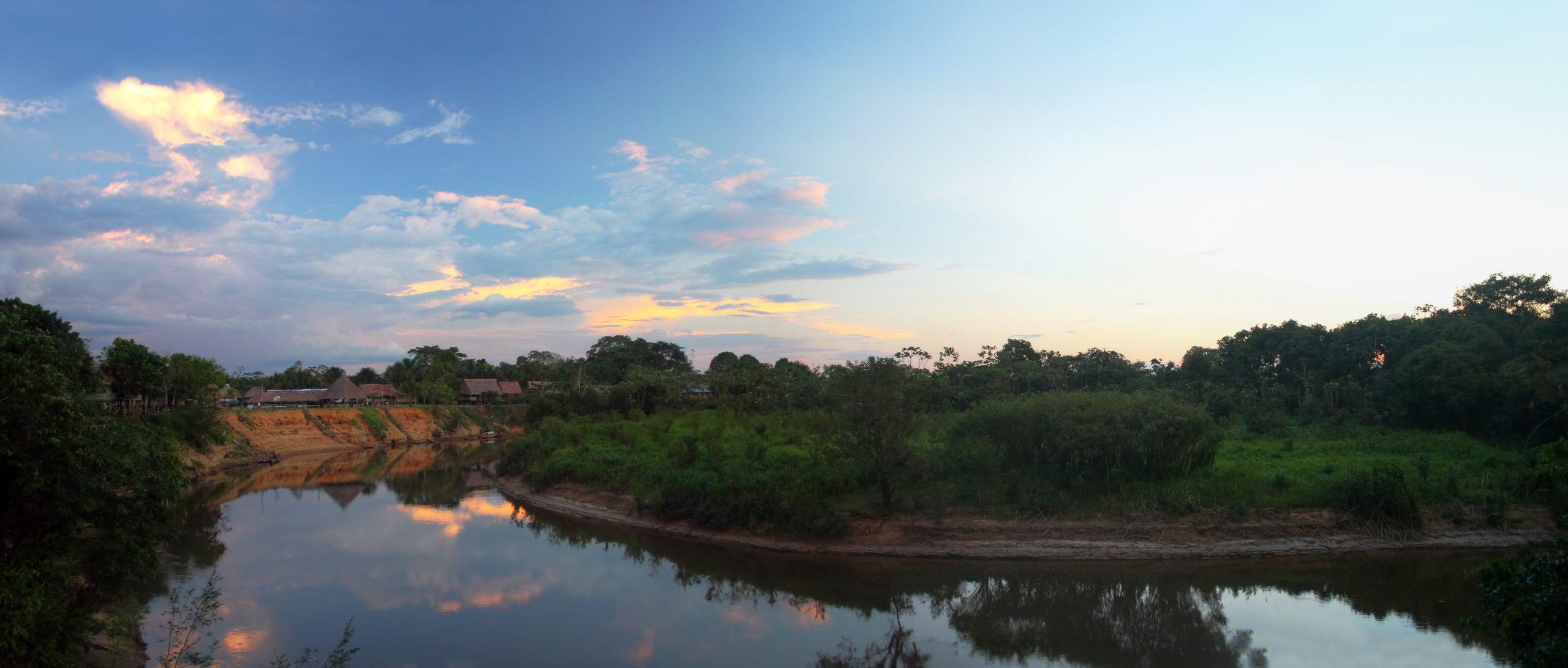 Querida Amazonia: Summary and Analysis
