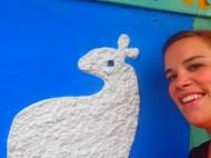 Lamby friend.