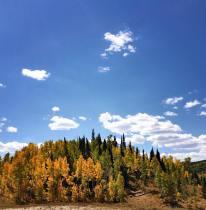 Fall is my fav.