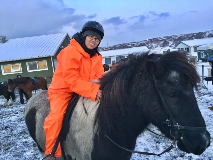 horseback riding in Iceland