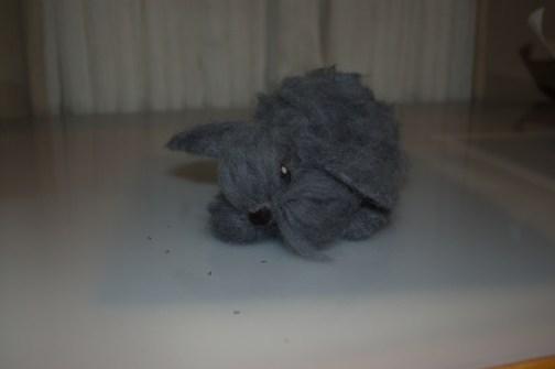 grey-bunny1