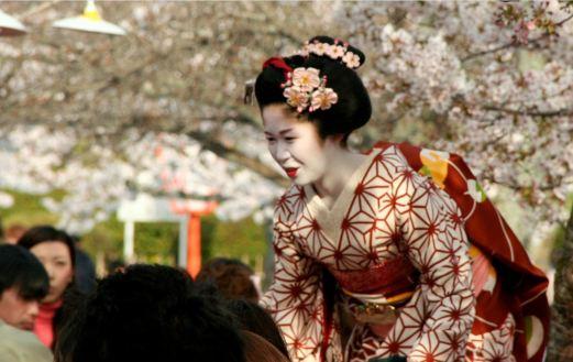 Geisha at Maruyama Park