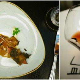 Le Victoria Brasserie Moderne | Gołąb, migdałowe mousseline, burak pieczony w soli, trufa
