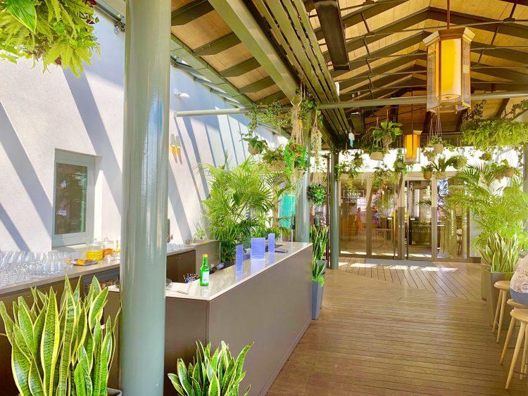 greenery at rooftop bar