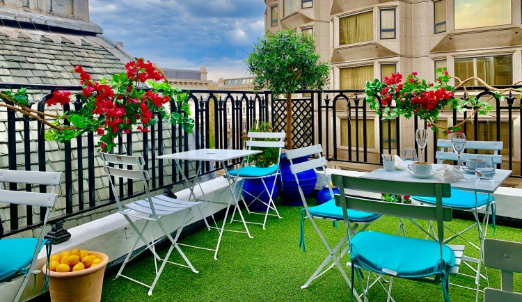 colourful summer garden rooftop with red flowers and a tub of lemons