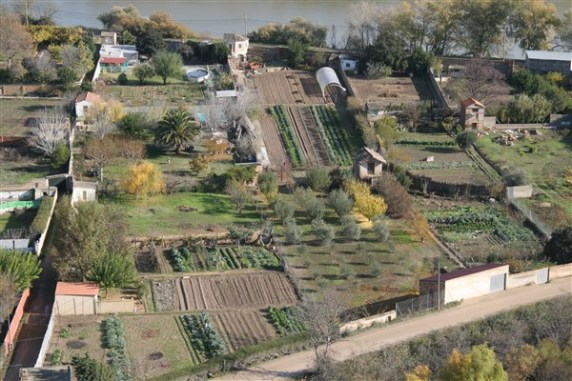 Allotments or small market gardens by river at Tudela