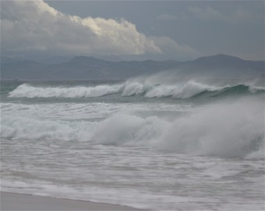 wave-8