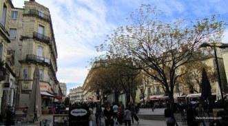 Montpellier8