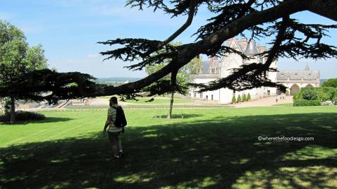 Amboise castle - where the foodies go61