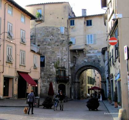 lucca - where the foodies go 23