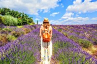 Provence - where the foodies go 15