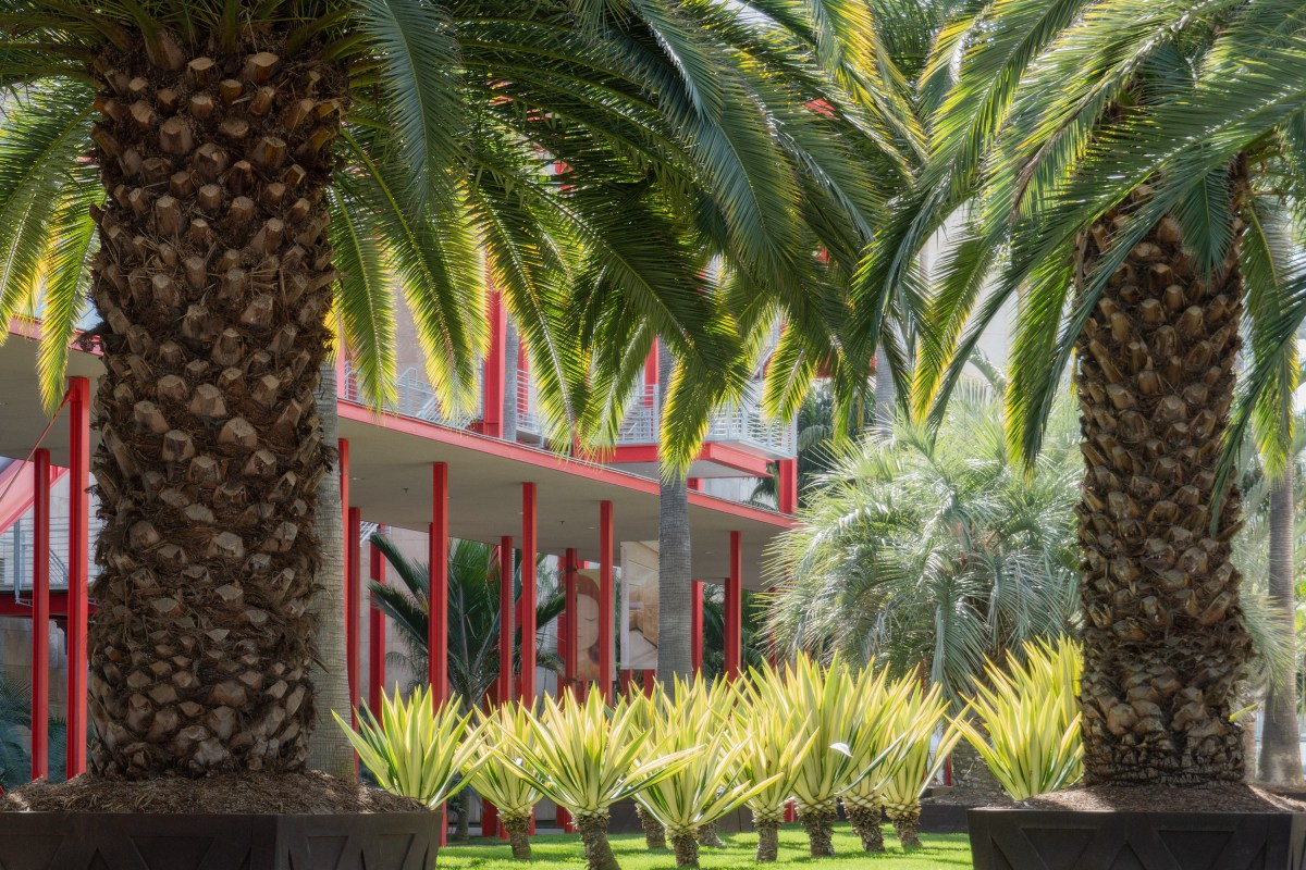 A Piece of LACMA Is Open