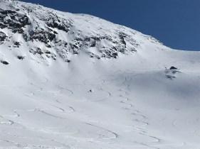 Great powder in Narvikfjellet's sidecountry