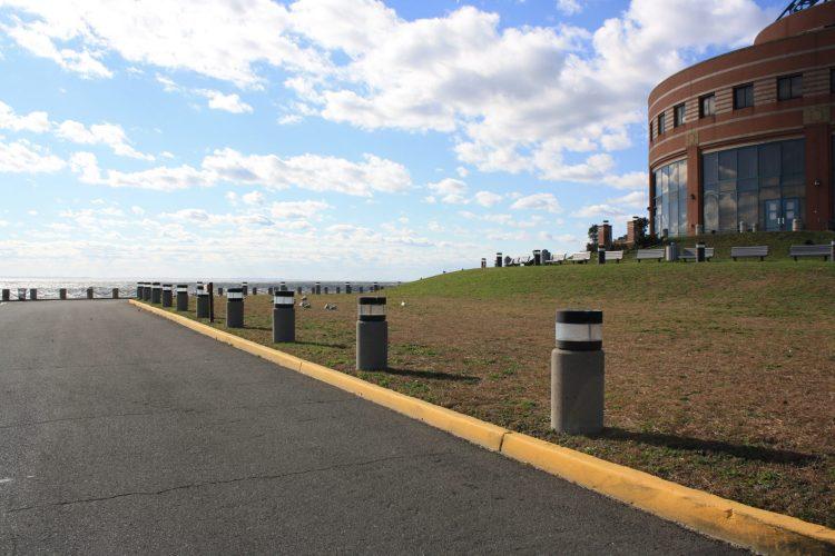 Coney Island Bike Ride