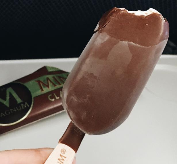 magnum mini bar
