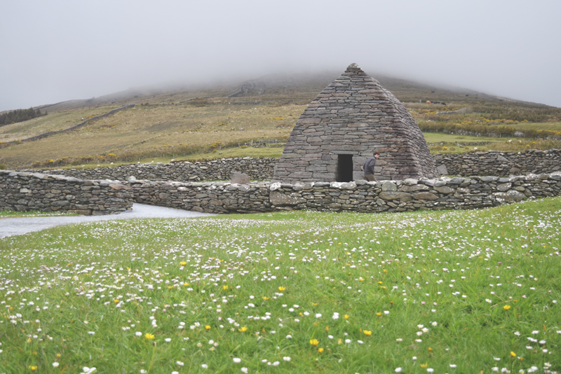 Gallarus-Oratory-stone-church-in-Dingle-Ireland-Peninsula-Ancient-Building-with-Wildflowers
