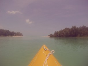 Kayaking the mangroves of Isla Holbox - Where you go next