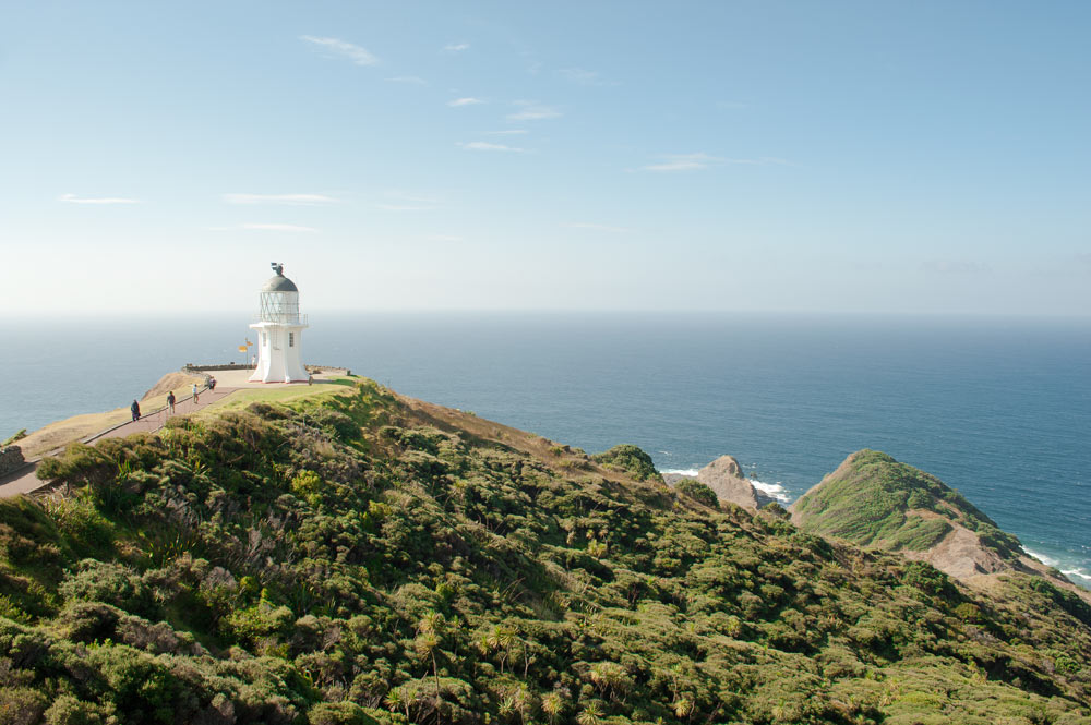 Things to do in Northland New Zealand