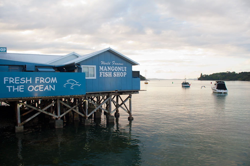 Mangonui Fish Shop - one of the best things to do in Northland North Island New Zealand