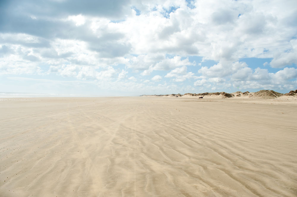 A drive on Ninety Mile Beach is one of the best things to do in Northland, New Zealand