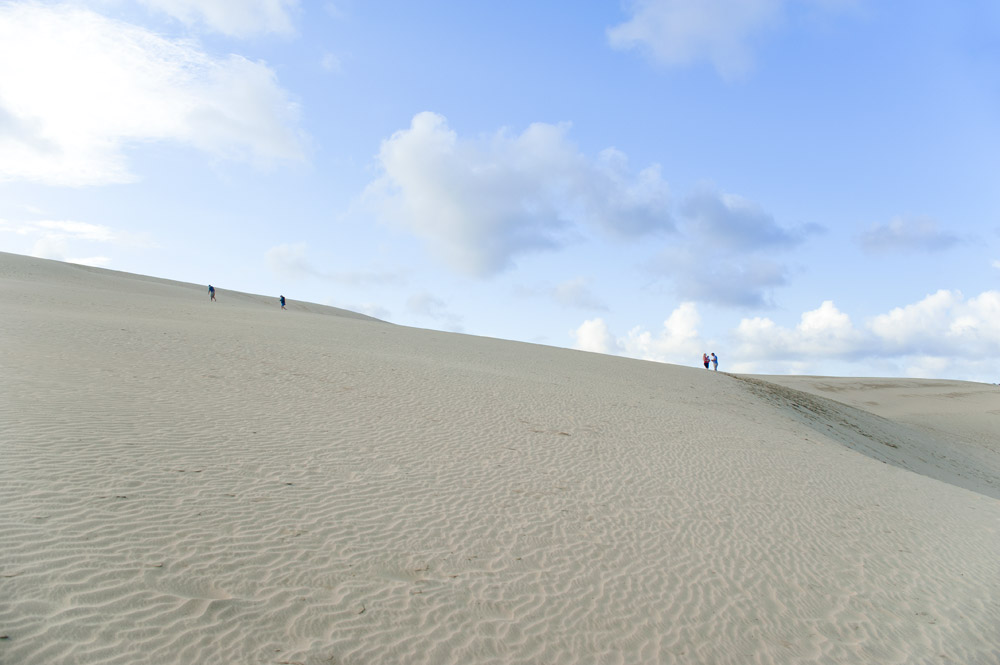 Te Paki giant sand dunes - one of the best things to do in Northland New Zealand