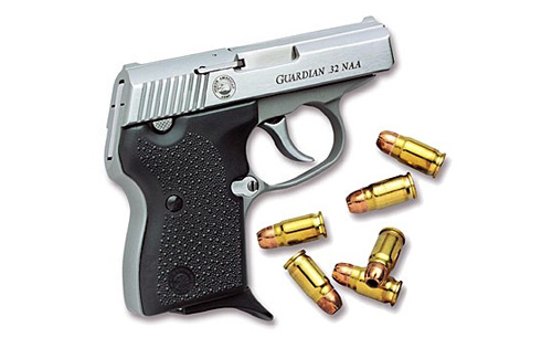 https://i0.wp.com/whichgun.com/img/firearms/pistols/naa/guardian_32_naa/1.jpg