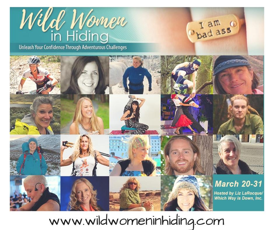 Wild Women in Hiding Telesummit