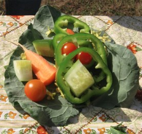 garden taco1a IMG_0465