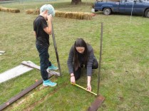 Students measured the beds