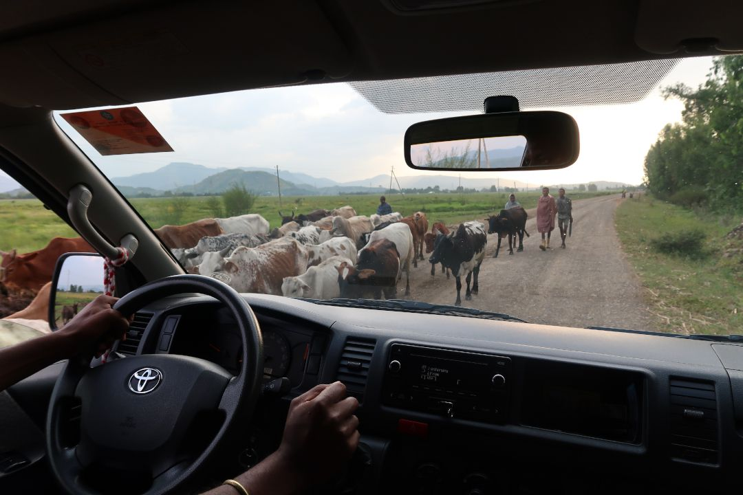 driving in ethiopia outside city.whileinafrica