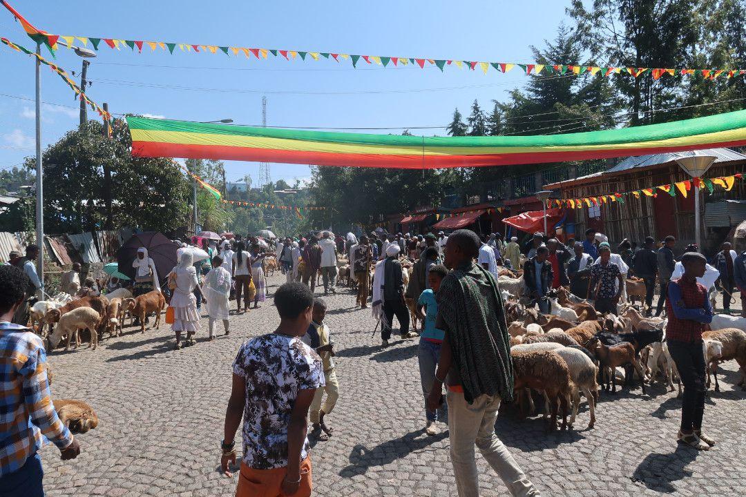 saturday market ethiopia suburbs.whileinafrica