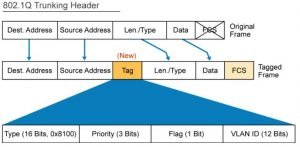 VLAN and Trunking