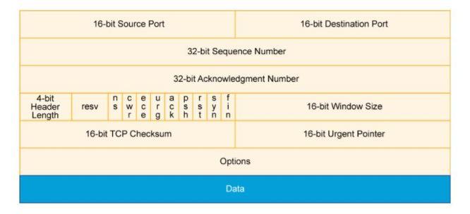 TCP/IP Basic
