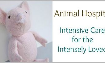 How to Repair a Special Stuffed Animal: Applying a Patch