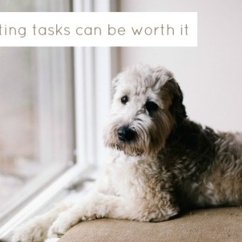 Delegating Tasks Can Be Worth It