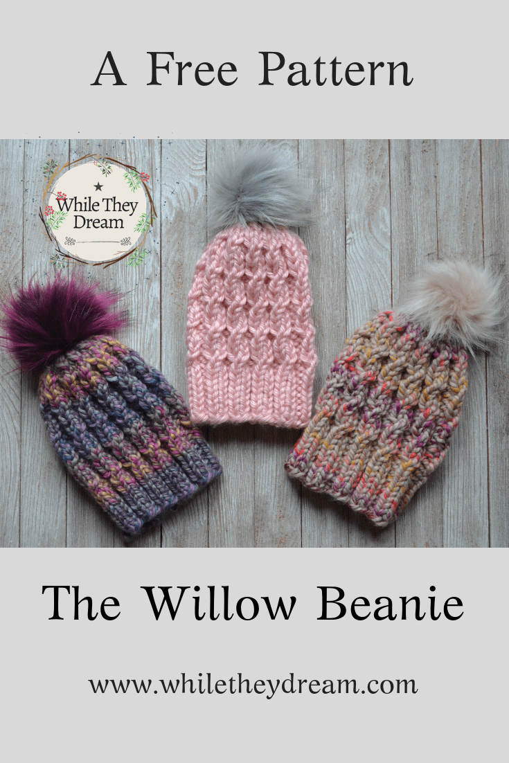 The Willow Beanie – While They Dream