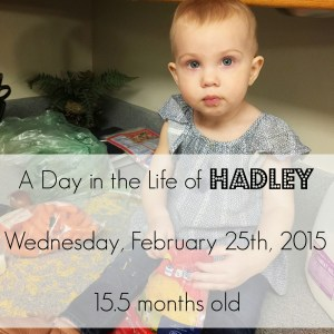A Day in the Life of Hadley: 15 Months Big