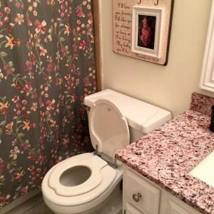 Little Girls' Bathroom Refresh