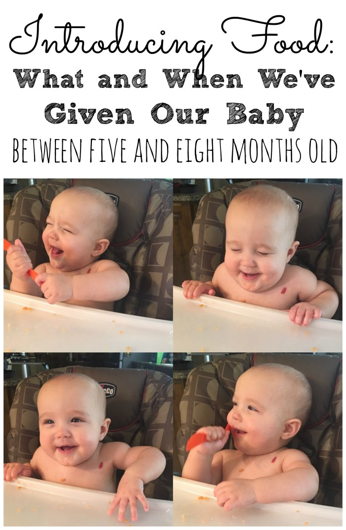 Introducing Baby Food: We started introducing Sadie to purees at five months + six days old. We started with bananas, apples, and sweet potatoes.