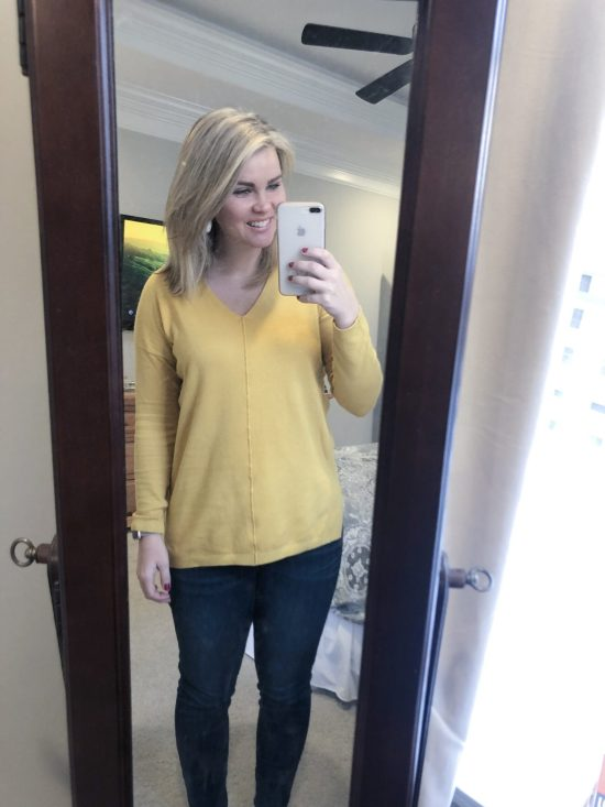 Stitch Fix Review February 2019 | WhimsicalSeptember.com | PINK CLOVER Hayes Seam Detail Pullover