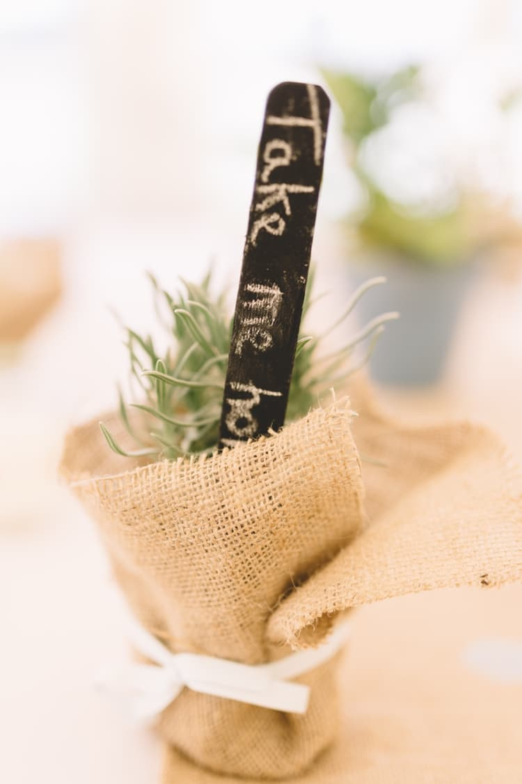 Potted Plant Favour Boho Beer Festival Wedding http://www.emilysteve.com/