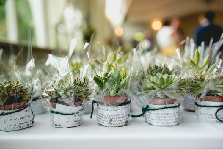 Succulent Favours Decor Fun Quirky 1950s Wedding http://www.lisacarpenterphotos.com/
