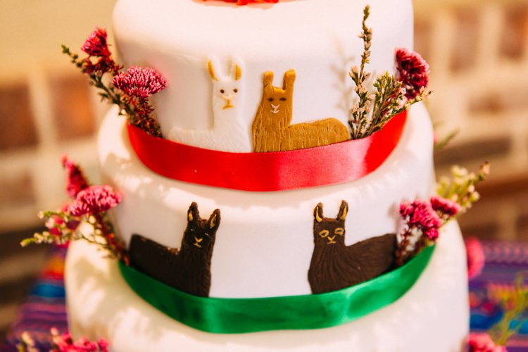 Llama Cake Colourful Mexican Garden Wedding http://jennifersmithphotography.co.uk/