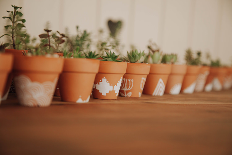 Painted Terracotta Succulents Orange Country Barn Wedding http://www.meganduffield.com/