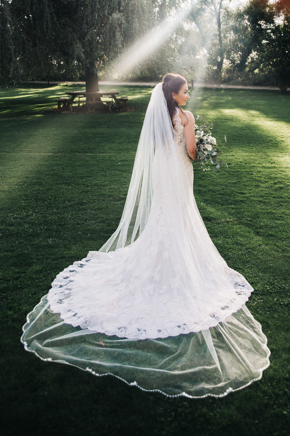 Lace Dress Train Fit Flare Button Bride Bridal Gown Veil Wray's Barn Whinstone View Wedding Sally T Photography