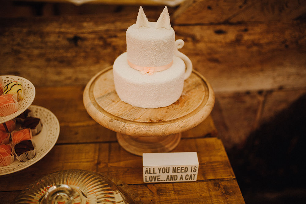 Cat Cake Pimhill Barn Wedding Shrophire Leah Lombardi Photography