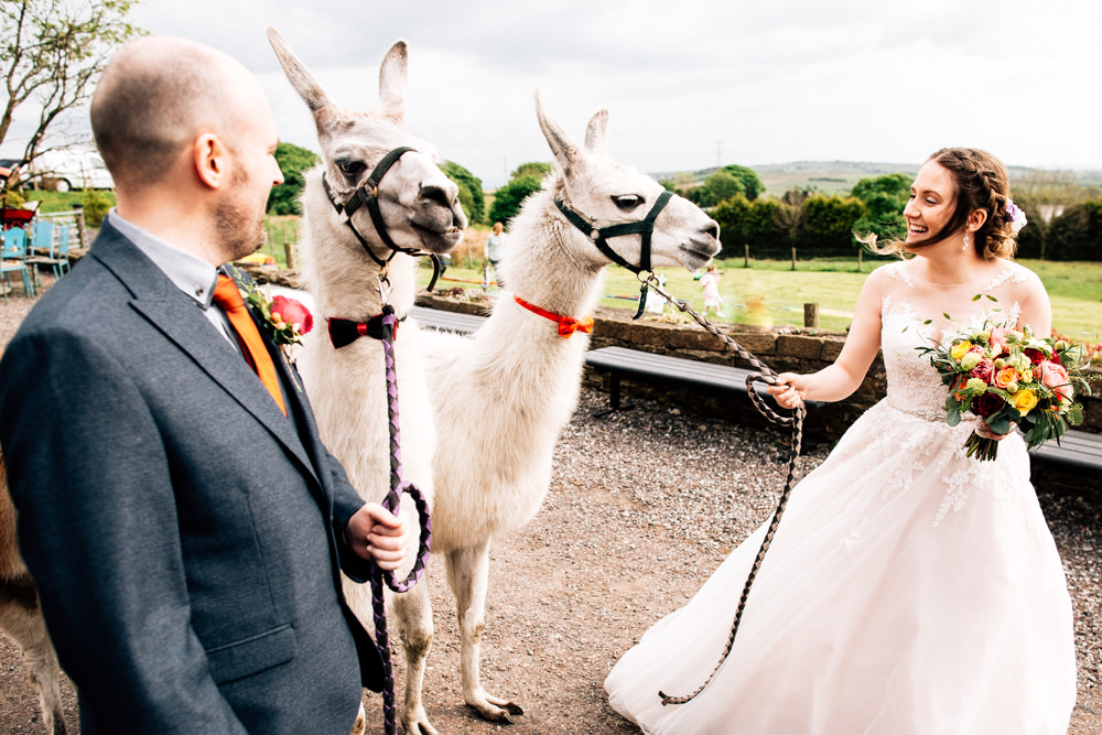 Bride Bridal Lace Tulle Full Skirt Sweetheart Illusion Navy Suit Orange Tie Groom Llamas Bow Tie Fun Quirky Colourful Wedding Fairclough Studios