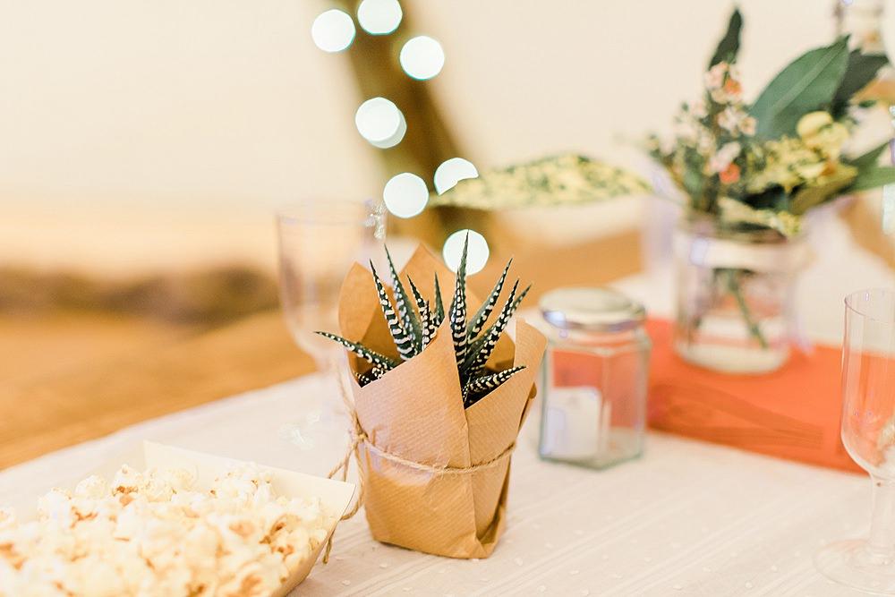 Succulent Favours Chiltern Open Air Museum Wedding Terri & Lori Fine Art Photography