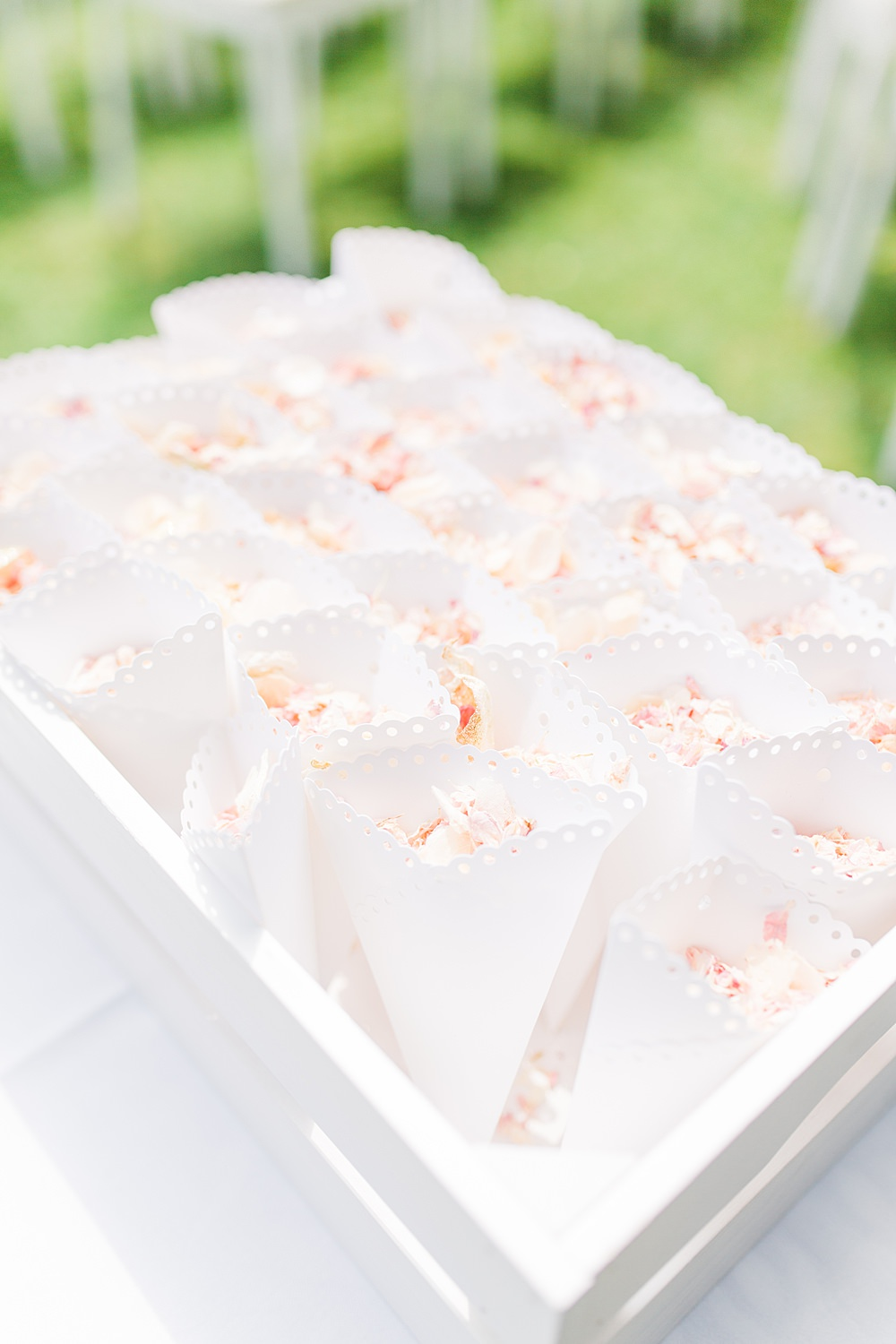 Confetti Cones Sheene Mill Wedding Terri & Lori Photography and Film Studio