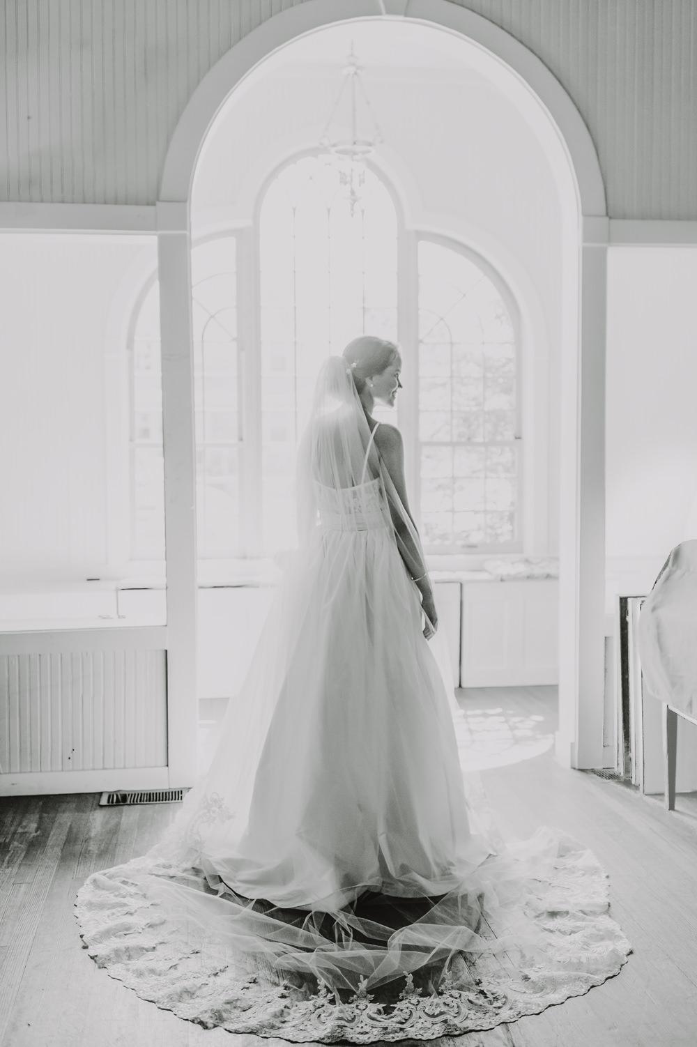 Dress Gown Bride Bridal Princess Straps Veil Train Maryland Wedding L. Hewitt Photography